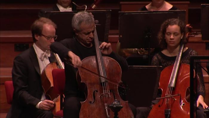 Haydn: Cello Concerto in D